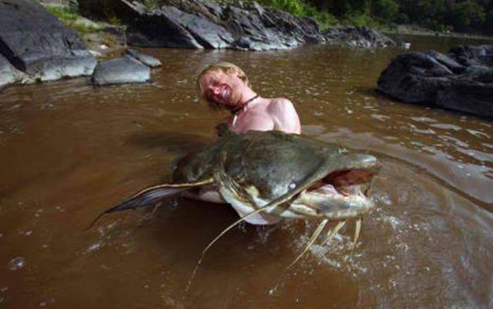 9 самых опасных рыб в мире (9 фото)