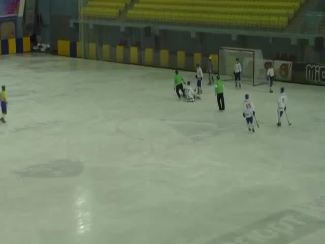 Матч Украина - Монголия на чемпионате мира по хоккею с мячом закончился массовой дракой