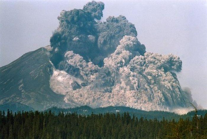 Предсмертные снимки жертв вулкана Сент-Хеленс (3 фото)