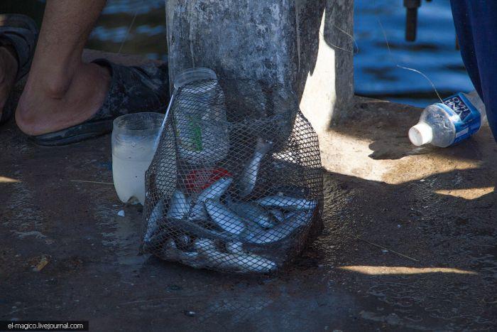 приспособление для ловли рыбы эвенк