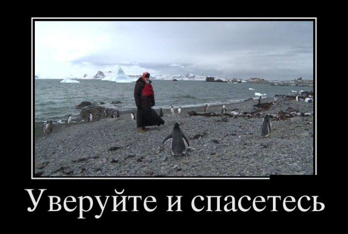 http://trinixy.ru/pics5/20160219/demotivatory_02.jpg