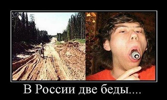 http://trinixy.ru/pics5/20160219/demotivatory_16.jpg