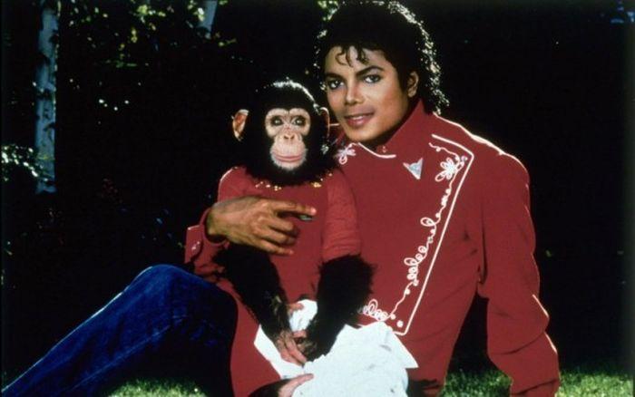12 невероятных фактов о Майкле Джексоне (12 фото)