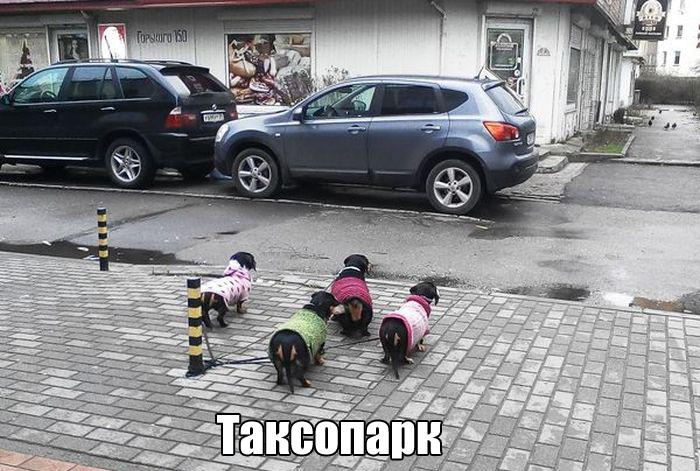 http://trinixy.ru/pics5/20160219/podborka_vecher_31.jpg