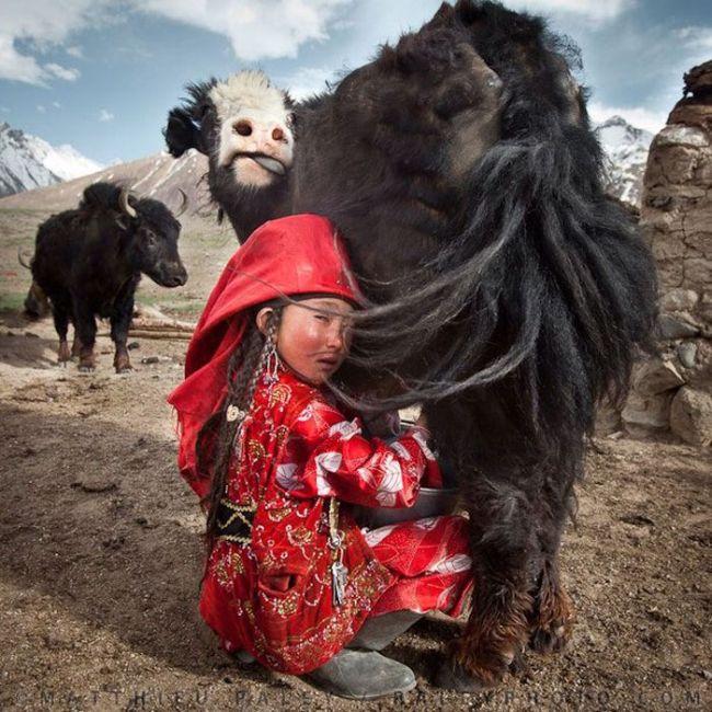 Великолепные снимки, сделанные путешественниками (29 фото)