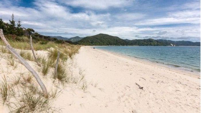 В Новой Зеландии при помощи краудфандинга выкупили частный пляж, чтобы сделать его общественным (7 фото)