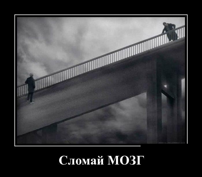 http://trinixy.ru/pics5/20160225/demotivatory_14.jpg