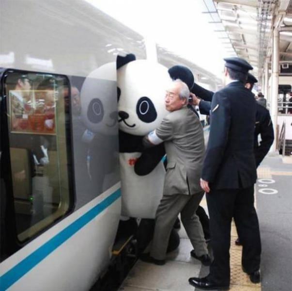Подборка смешных фото из Японии (38 фото)