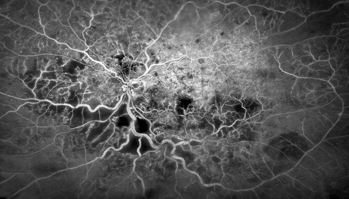 Удивительные фото из мира науки (20 фото)