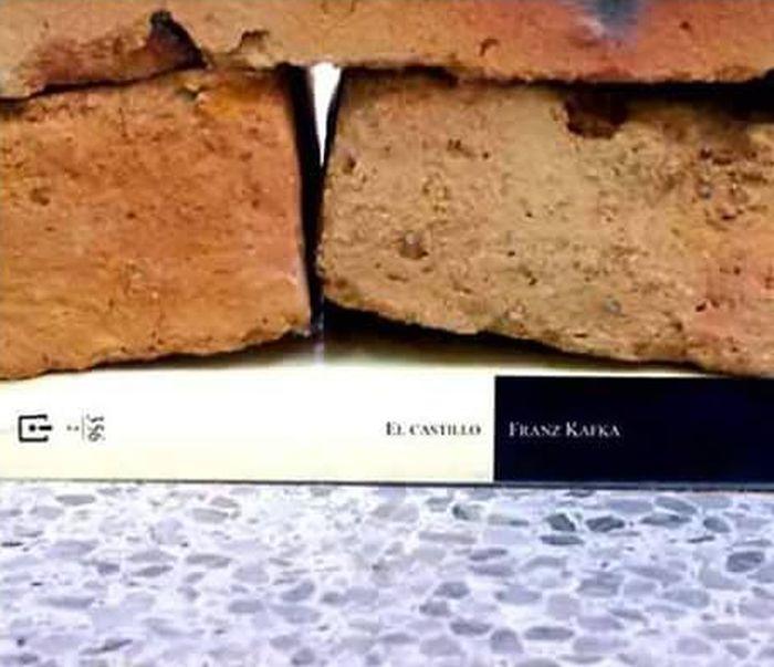 «Влияние одной книги» - коллаж, получивший популярность в сети (4 фото)