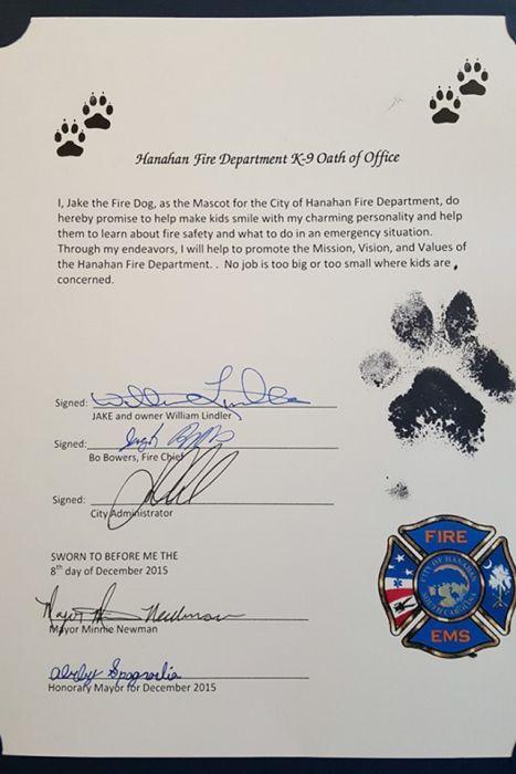Как спасенный на пожаре щенок стал пожарным (12 фото)