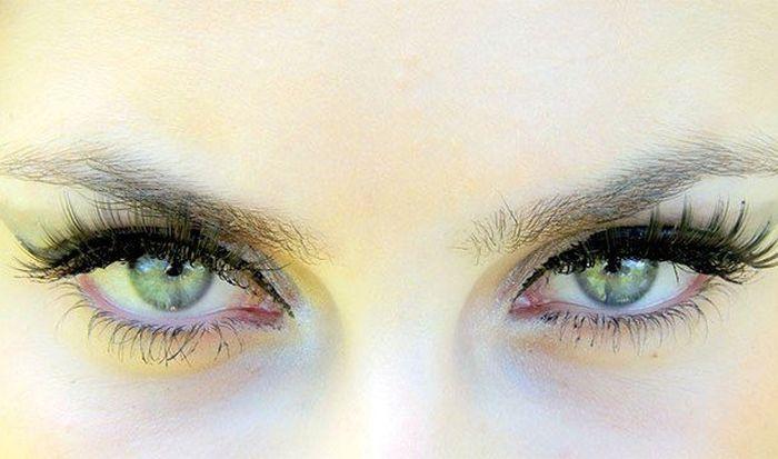 Любопытные факты про глаза и их сложное строение (24 фото)