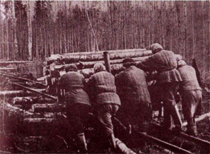 Нехитрые рецепты самолечения в сталинских лагерях (6 фото)