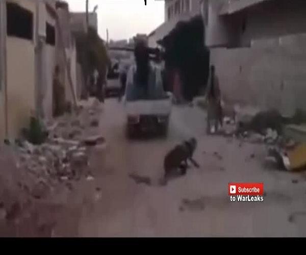 «Бравые» ближневосточные бойцы