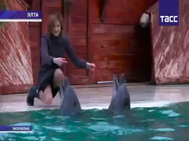 Прокурор Крыма Наталья Поклонская поплавала с дельфинами