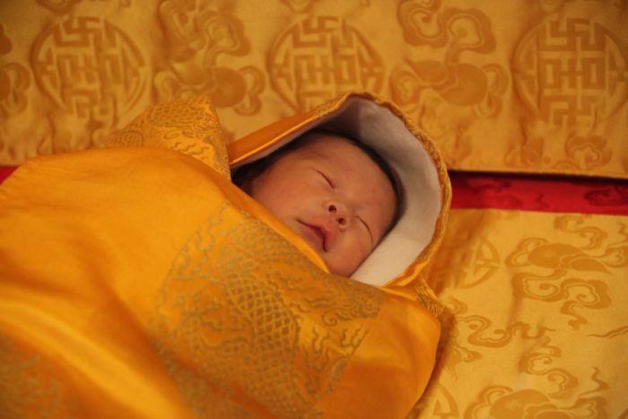 В Бутане рождение принца отпразднуют высадкой леса из 108 000 деревьев (8 фото)