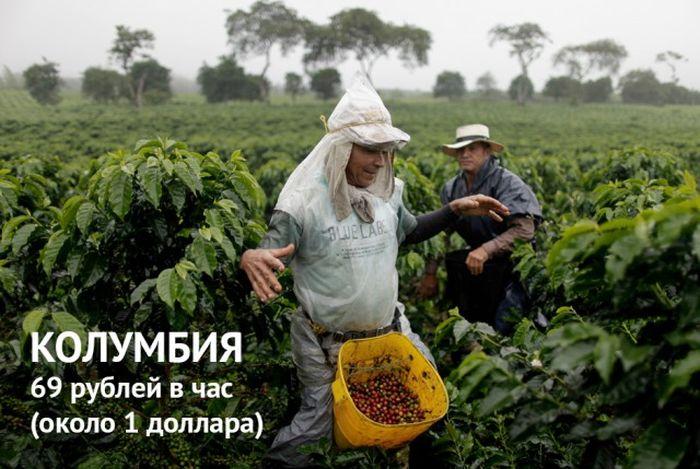 Минимальный размер оплаты труда в разных странах мира (13 фото)