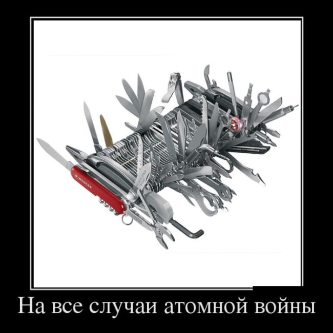 http://trinixy.ru/pics5/20160324/demotivatory_24.jpg