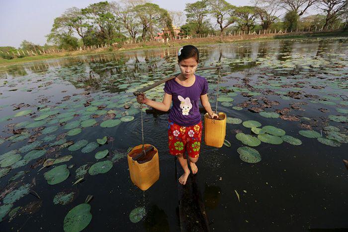 Фотоподборка, напоминающая нам истинную ценность воды (24 фото)