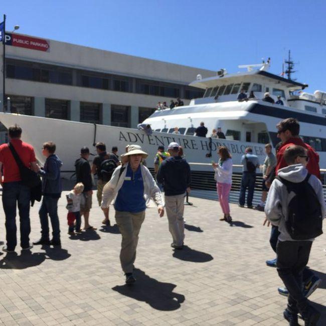 В Сан-Диего круизный лайнер врезался в пристань (4 фото + видео)