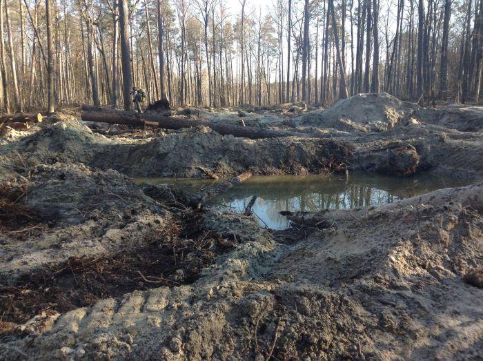 Последствия нелегальной добычи янтаря (4 фото)