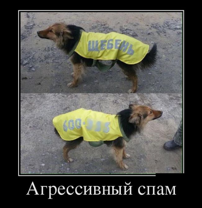 http://trinixy.ru/pics5/20160407/demotavtory_04.jpg