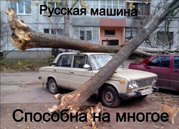 Авто приколы (39 фото)