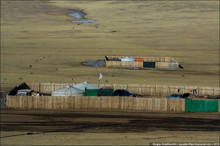 Для чего монголы строят заборы вокруг своих юрт в степях (3 фото)
