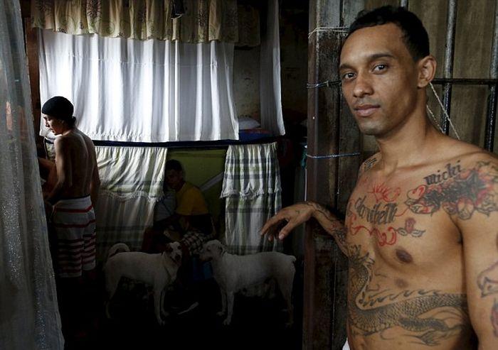 Жизнь и быт заключенных панамских тюрем (16 фото + видео)
