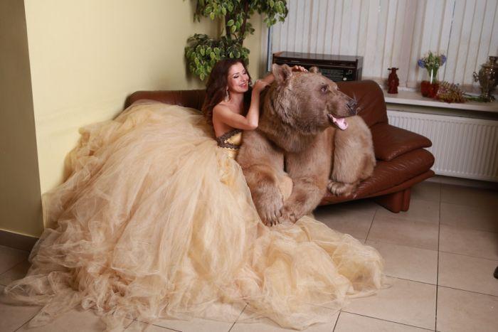 Смелая фотосессия девушки с медведем (20 фото)