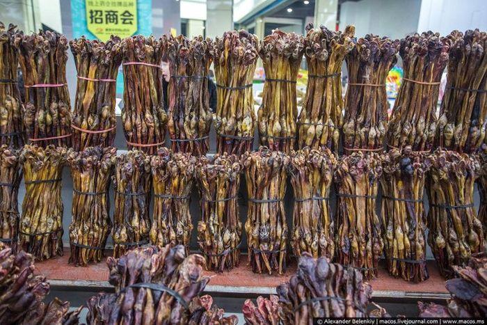 Магазин сушеных пенисов в Китае (8 фото)