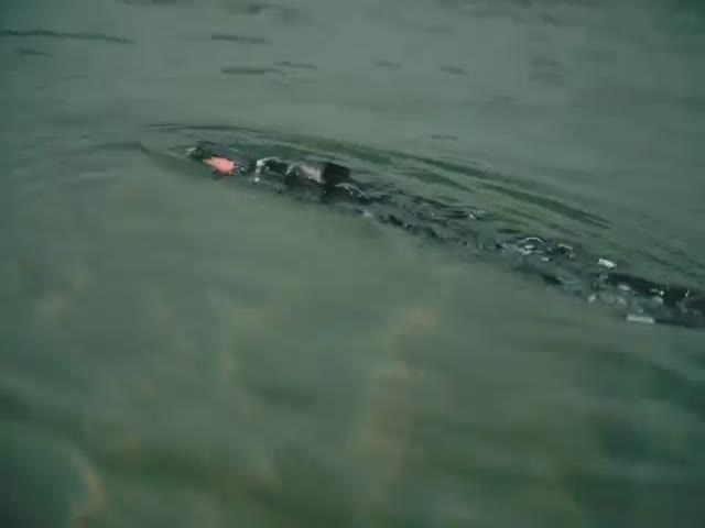 В Норвегии создали подводного робота-змею