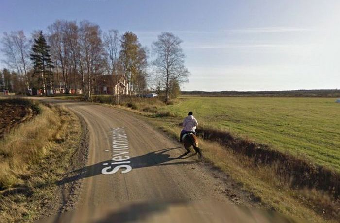 Последствия встречи лошади с машиной Google Street View (5 фото)