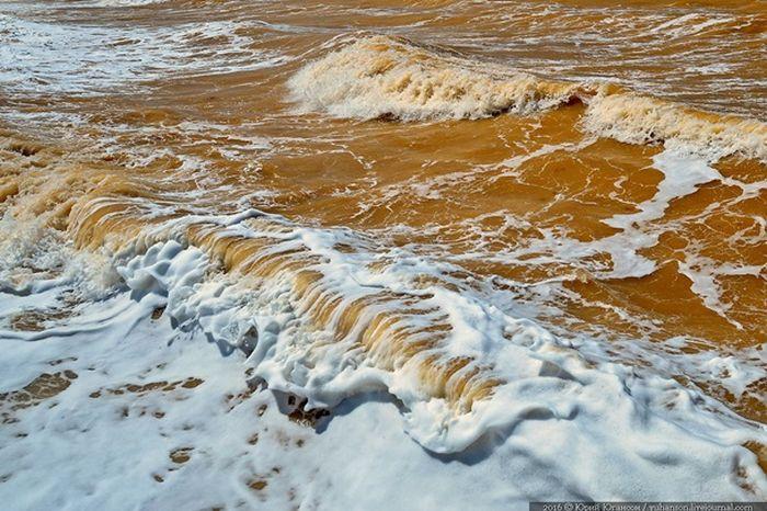 В Крыму воды Черного моря окрасились в желтый цвет (3 фото + видео)