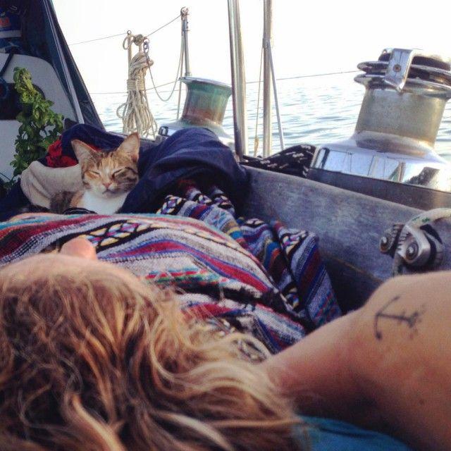 Девушка с кошкой совершают кругосветное путешествие на яхте (12 фото)
