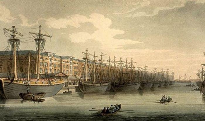 Интересные и удивительные истории мореплавателей (настоящие)