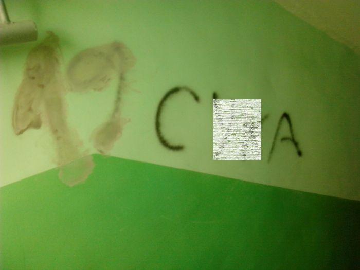 Зеленая пена из жопы фото 667-667