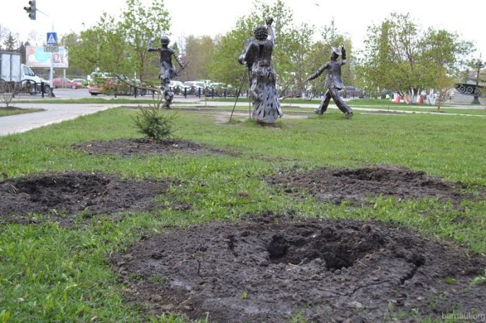В Барнауле похитили молодые ели, высаженные в ходе акции «Лес Победы» (3 фото)