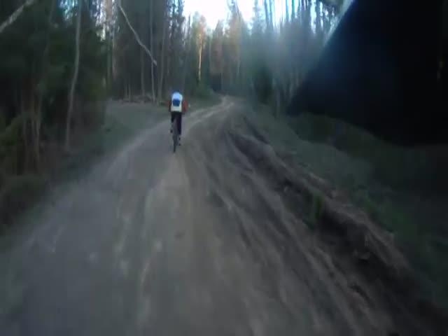Конфликт на лесной дороге из-за непотушенного костра
