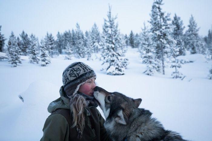 Жизнь отшельницы на севере Финляндии (20 фото)