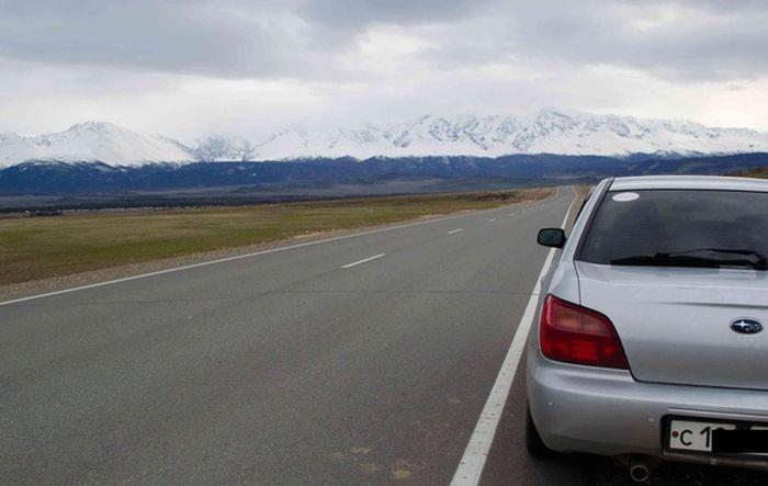 Как временно скрыть дефекты авто (6 фото)