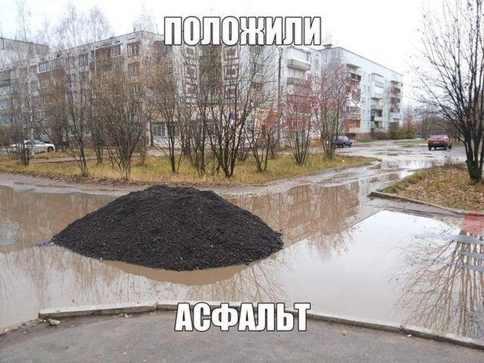 http://trinixy.ru/pics5/20160513/auto_prikoli_01.jpg