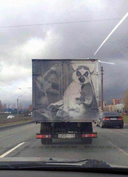 http://trinixy.ru/pics5/20160513/auto_prikoli_30.jpg