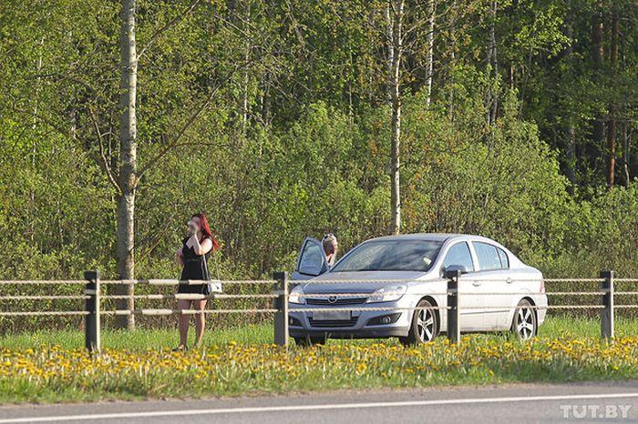 Как работают жрицы любви на трассе М1 (10 фото)