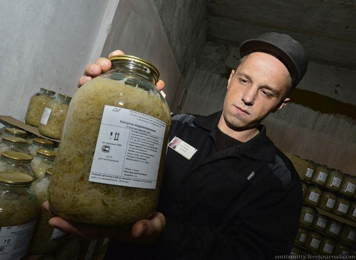 Завод по переработке и консервированию овощей в колонии строгого режима (37 фото)