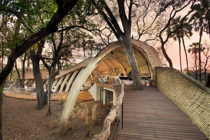 Отель, вдохновленный дикой природой (28 фото)