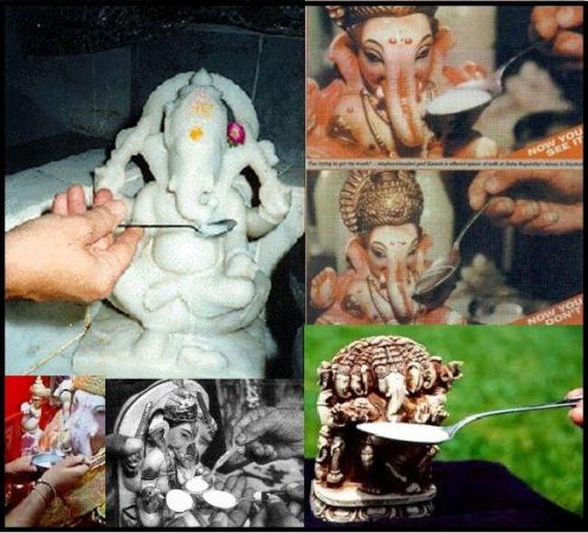Как индуистские божества молоко пили (6 фото + 3 видео)