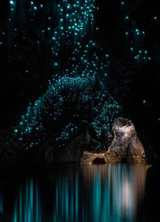 Удивительные пещеры Вайтомо в Новой Зеландии (12 фото)
