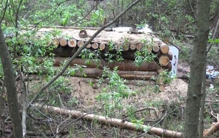 В Костромской области мужчина построил лесную землянку, планируя спастись от апокалипсиса и коллекторов (6 фото)