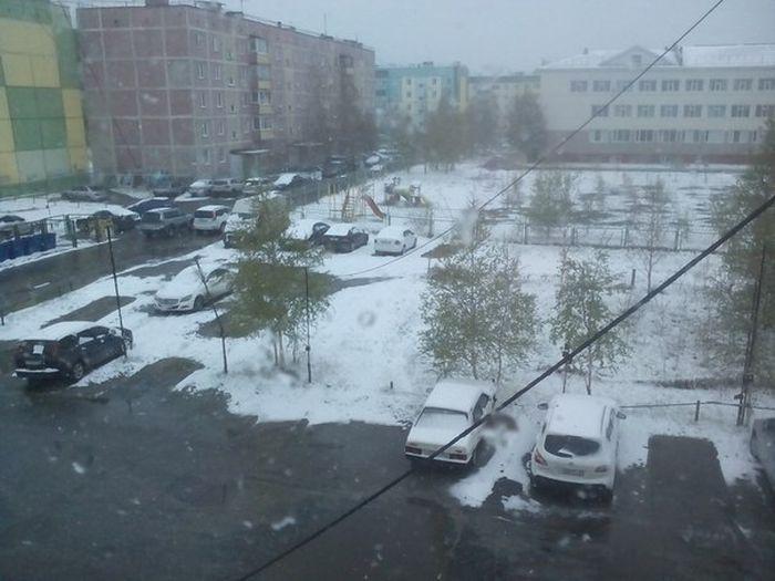 Снег в июне (18 фото)